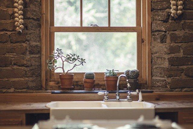 Usaha Agribisnis Rumahan